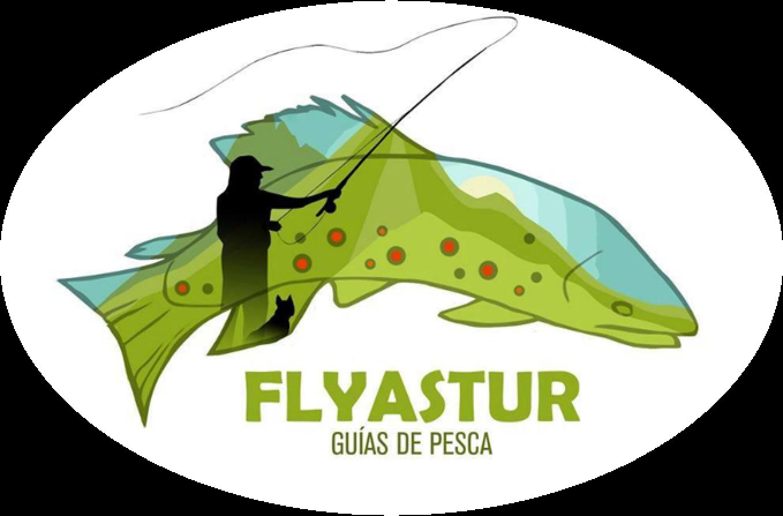 Flyastur